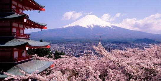 Дарвиновский музей приглашает на выставку «Моя Япония».