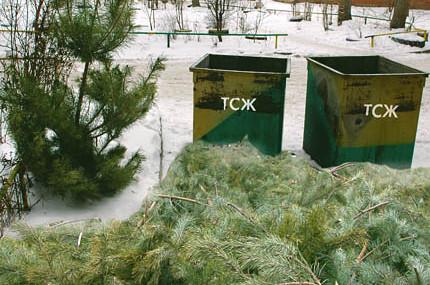 Жители Восточного округа могут сдать на переработку отслужившие новогодние ёлки в 15 мобильных пунктах.
