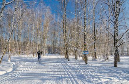 Лучшая лыжня по рейтингу КП в парках столицы.