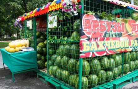 В Восточном округе открылось семь официальных точек по торговле бахчевыми