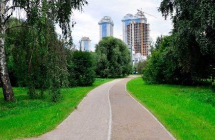 Самые экологически чистые районы определили в Москве