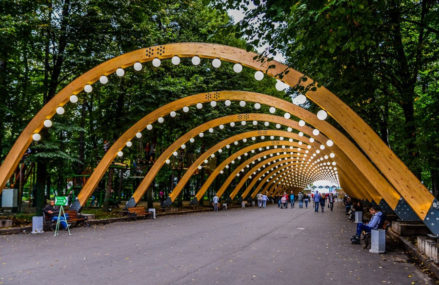 Вечером 12 сентября посетители парка «Сокольники» видели лосиху. l