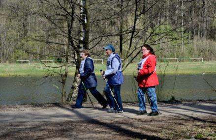 Поклонники скандинавской ходьбы занимаются в лесопарке Кусково