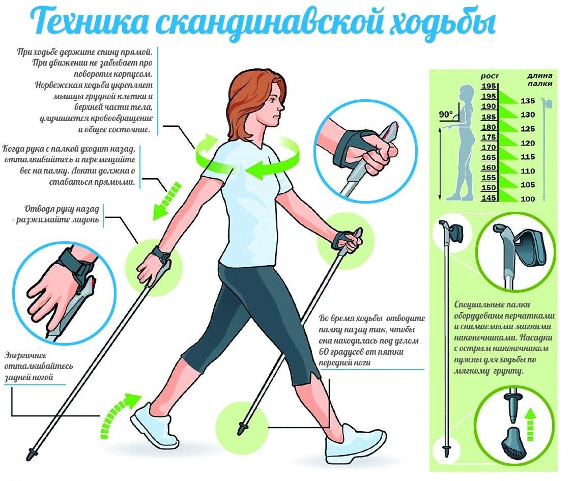 skandinavskaya_hodba_priemushhestva