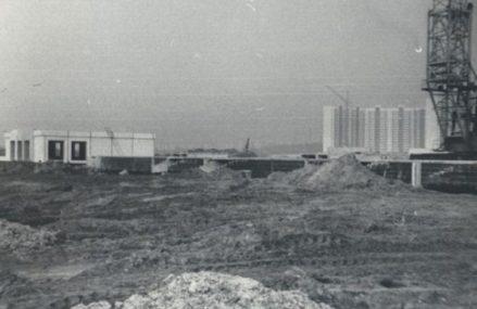 Новокосино с 1986-2012 гг.