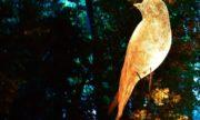 В московском парке «Останкино» проходит фестиваль искусств «Вдохновение»