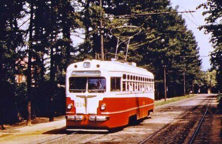 Измайловский парк, 1957 г. (всего 60 лет назад).