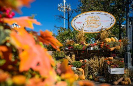 Все площадки фестиваля «Золотая осень»
