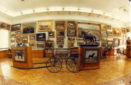 Экспозиция в Музее коневодства аналогов которой нет в мире