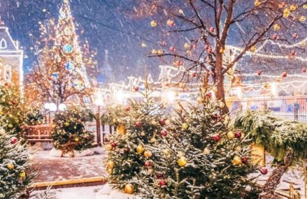 Встретить Новый год можно будет в 22 столичных парках