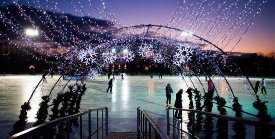 Бесплатный каток с искусственным льдом работает в парке «Останкино».