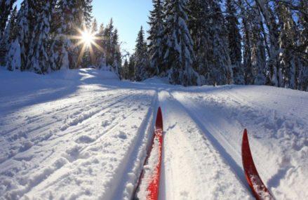 «Гольяновская лыжня 2018» соберет жителей ВАО в Лосином острове