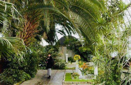 Если захотелось ярких красок, весенних ароматов и экзотики — отправляйтесь в царицынские оранжереи!