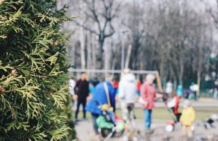 1 мая в Перовском парке пройдет мероприятие под символичным названием «Расцветай!»