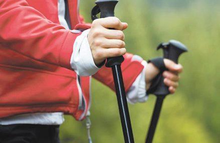 В Перовском парке начались занятия скандинавской ходьбой