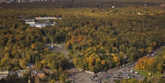 Памятник Третьякову откроют осенью в парке «Сокольники» в Москве