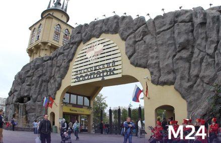 Московский зоопарк откроет программу утренних посещений