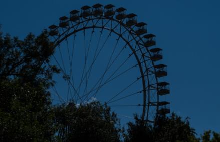 В парке «Измайлово» тело убитой женщины 3 недели пролежало у колеса обозрения