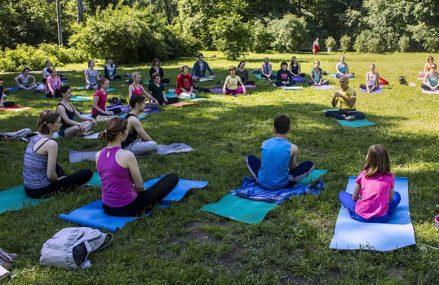 Бесплатные регулярные занятия йогой в Парке «Сокольники»