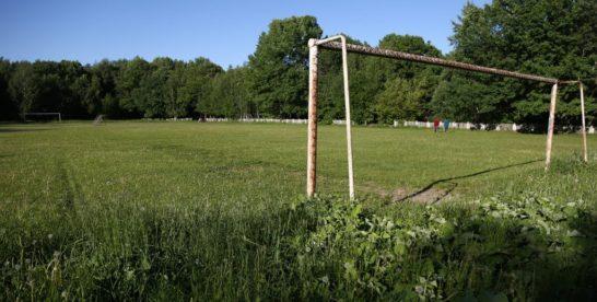 Возрождение стадиона «Фрезер» могут включить в проект благоустройства парка «Кусково»
