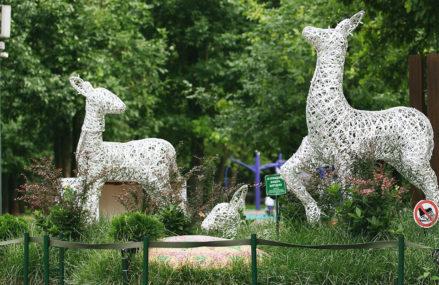 Перовский парк Москвы приглашает гостей посетить пять знаковых мест на своей территории