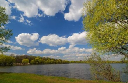 Зона отдыха на озере Белое привлекает новокосинцев