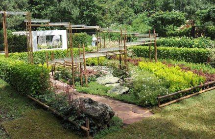 Фестиваль «Сады и люди на ВДНХ» пройдет в августе