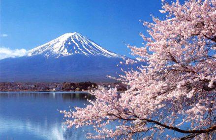 Уникальная выставка на тему Японии пройдет в Измайлове