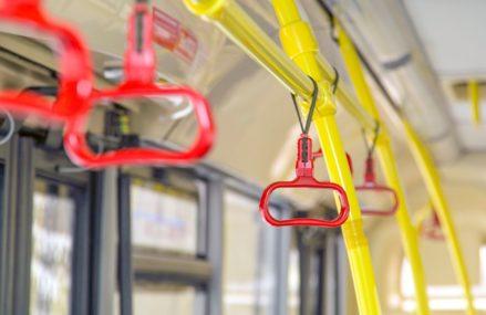 Из Гольянова до Новокосина можно будет доехать на автобусе