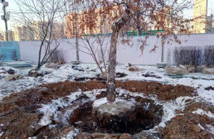 ГБУ Московские ярмарки захватило Городецкий бульвар и уничтожает деревья