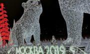 Большая и Малая Медведицы в Москве