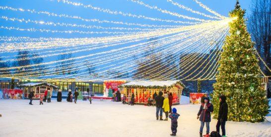 Рождественские каникулы в парках ВАО