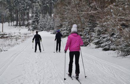 В парке «Сокольники» открыты 10 лыжных трасс различной протяженности