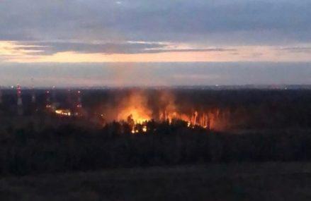 Крупный пожар тушат в парке «Лосиный остров»