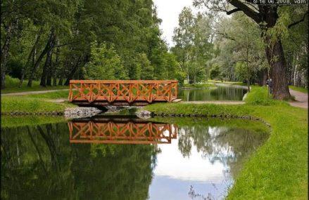 Лошадь сломала мост в парке Сокольники