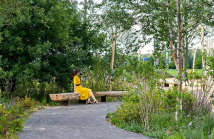 Парк по мотивам сказки об Иване-царевиче создали на востоке Москвы