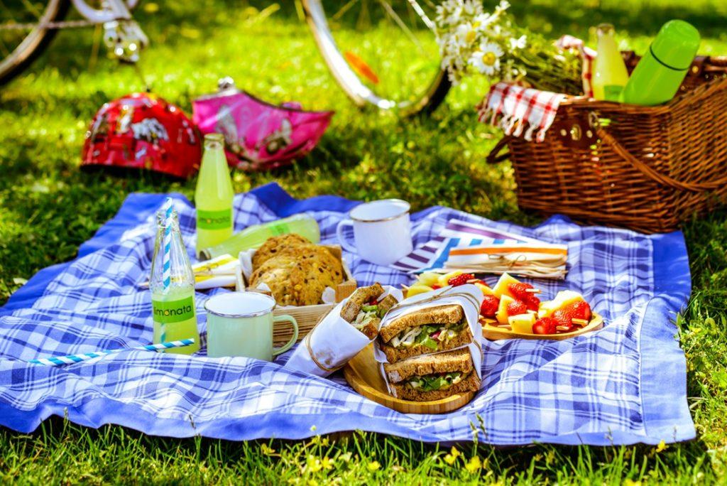 относятся картинка пикник в парке это оригинальный