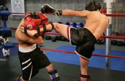 Восточное Измайлово примет крупный турнир по кикбоксингу