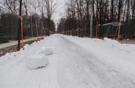В парке «Сокольники» начала работать всепогодная лыжная трасса