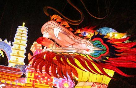 В парке «Сокольники» пройдет китайская новогодняя ярмарка