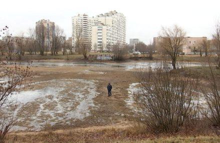 Бабаевский пруд в районе Гольяново обмелел