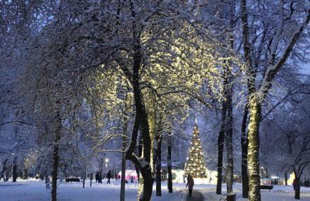 Перовский — это компактный, но очень уютный парк на востоке столицы.