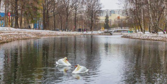 7 фактов про Лианозовский парк