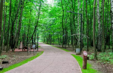Самые живописные беговые дорожки в парках Москвы
