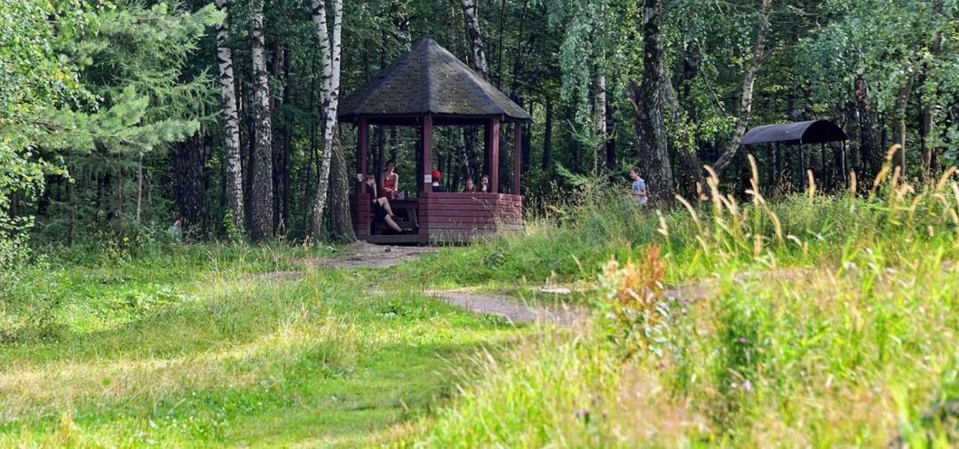 дорожки парка Северное Бутово