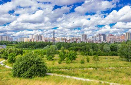 7 фактов про ландшафтный парк Митино в Москве.