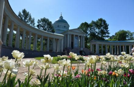 Где погулять осенью в Подмосковье: исторические парки, усадьбы и музеи-заповедники
