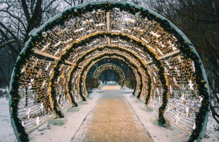 Онлайн-программа в парках Москвы с 31 декабря по 10 января