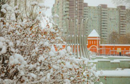 Цветаева, Куклачев, Версаче: парки подготовили онлайн-программу с 30 ноября по 6 декабря