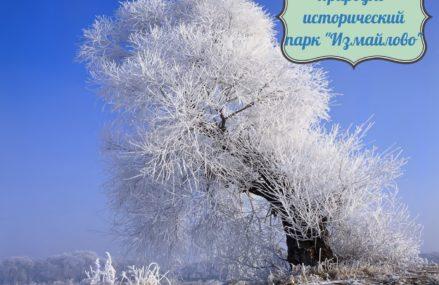 «Заповедные территории» Москвы: Природно-исторический парк «Измайлово»
